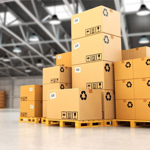 Establishment of a robust wholesale distribution company