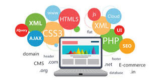 language in web development and Trends in 2019