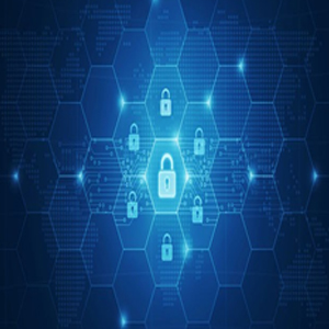 Almost Half the Number of Organizations Lack Confidence in their Cyber Insurance Policies: A Survey Report