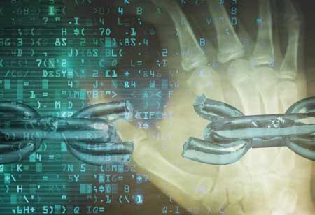Human Behavior the Weak Link in Cyber Defense