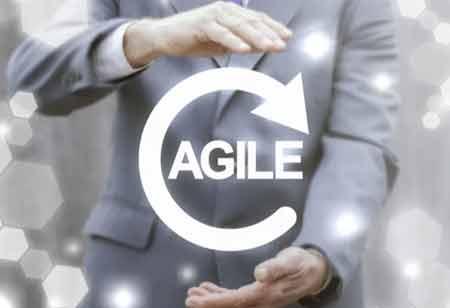 Key Traits of an Agile Organization