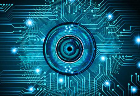 Safeguarding Organizations against Cyber Threats