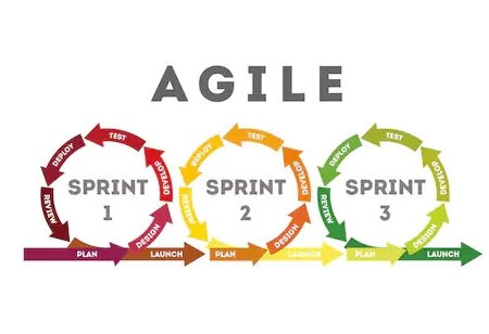 Learn How to Create an Agile Environment