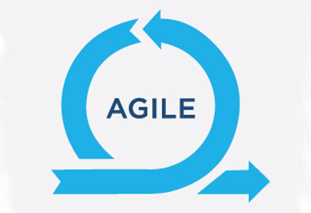 The Role of Management Support in Agile implementations