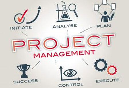 Roles that are followed by Project Management Methodology